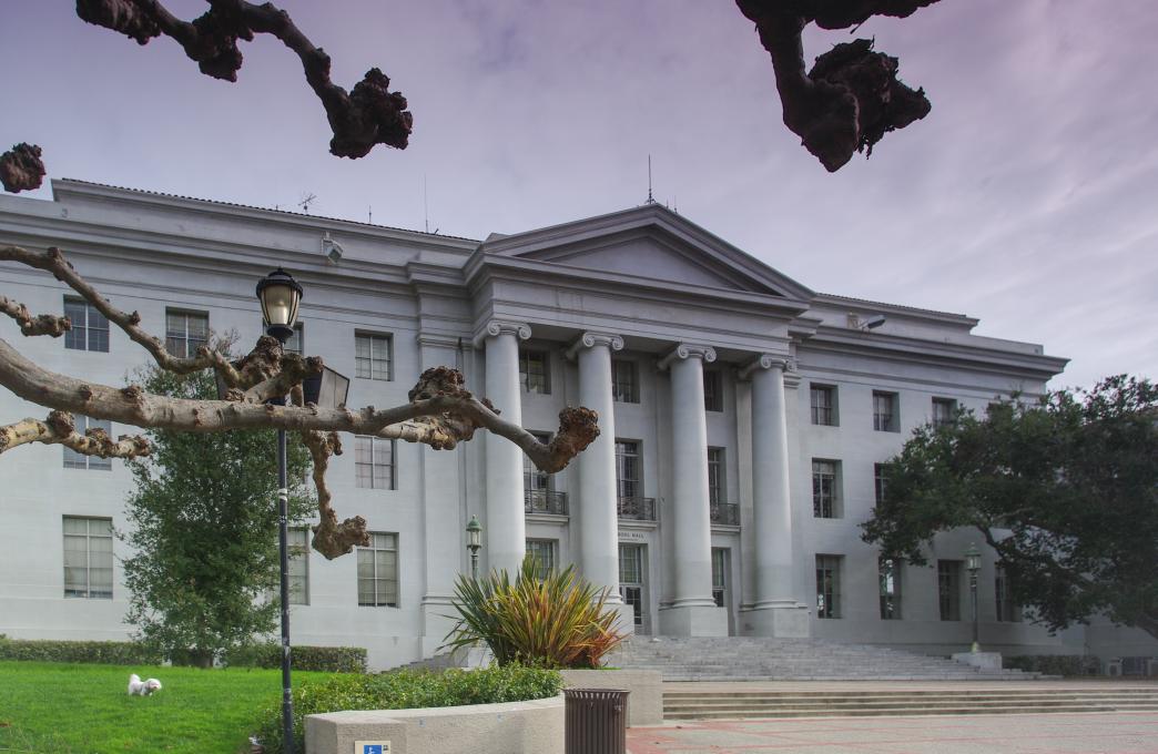 Ansøgningsstartskuddet har lydt, og vi har samlet en række eksempler på, hvad universiteter som eksempelvis UC Berkeley optager kandidater ud fra.